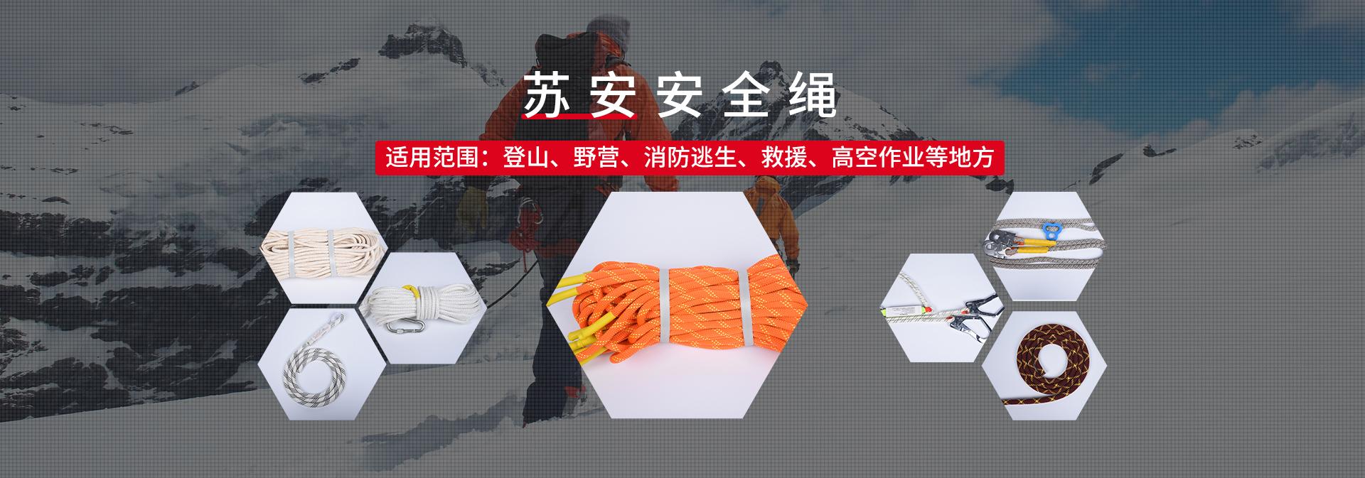 江苏苏安安防科技有限公司